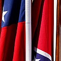Flags Of The North And South by Joe Kozlowski