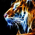 Flaming Tiger by Shane Bechler