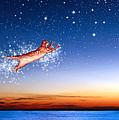 Flight To Sagittarius by Kathleen Horner