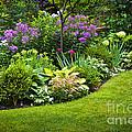 Flower Garden by Elena Elisseeva
