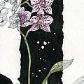 Flower Orchid 04 Elena Yakubovich by Elena Yakubovich
