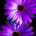 Flower Study 6 - Vibrant Purple By Sharon Cummings by Sharon Cummings
