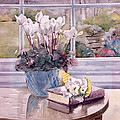 Flowers And Book On Table by Julia Rowntree