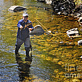 Fly Fishing For Trout by Nava Thompson