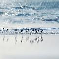 Flying Free by Jenny Rainbow