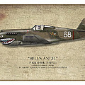 Flying Tiger P-40 Warhawk - Map Background by Craig Tinder