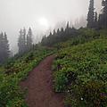 Foggy Crest Trail Print by Mike  Dawson