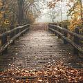 Foggy Lake Park Footbridge by Scott Norris