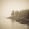 Foggy Maine Coast Print by Diane Diederich