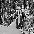 Foot Bridge In Winter by David Rucker