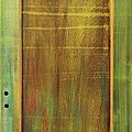 Forest Painted Door by Asha Carolyn Young