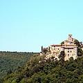Forgotten Chateau