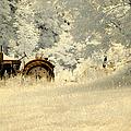Forgotten Harvest by Luke Moore