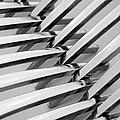 Forks I by Natalie Kinnear