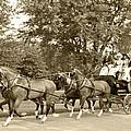 Four Wheel Cart Large Family by Wayne Sheeler