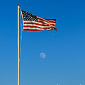 Freedom by Robert Bales
