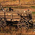 Freight Wagon Print by Robert Bales
