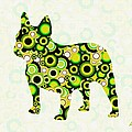 French Bulldog - Animal Art by Anastasiya Malakhova