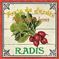 French Vegetable Sign 1 by Debbie DeWitt