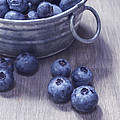 Fresh Picked Blueberries With Vintage Feel by Edward Fielding