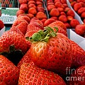Fresh Strawberries by Peggy J Hughes