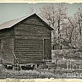 Frosty Morning Sepia 1 by Chalet Roome-Rigdon