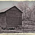 Frosty Morning Sepia 2 by Chalet Roome-Rigdon