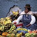 Fruit Seller by James Brunker