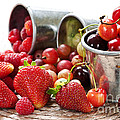 Fruits And Berries by Elena Elisseeva