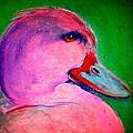 Funky Pinky Ducky Ar...