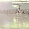 Futsal - Football Court. by Rodrigo Cesar