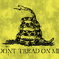 Gadsden Flag - Dont Tread On Me by World Art Prints And Designs
