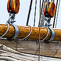 Gaff And Mainsail by Marty Saccone