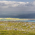 Galway Bay from Abbey Hill  Print by Michael David Murphy