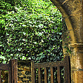 Garden Gate In Sarlat by Elena Elisseeva