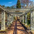 Garden Path by Adrian Evans
