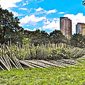 Garden With Bamboo Garden Fence In Battery Park In New York City-ny by Ruth Hager