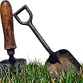 Gardening Tools by Olivier Le Queinec