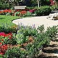 Gardenscape by Aimee L Maher Photography and Art Visit ALMGallerydotcom