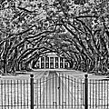 Gateway To The Old South Bw by Steve Harrington