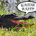 Gator Bait Greeting Card by Al Powell Photography USA