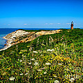 Gay Head Light And Cliffs by Mark Miller