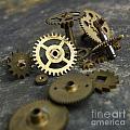 Gears by Bernard Jaubert