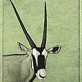 Gemsbok by James W Johnson