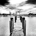Georgetown Dock by John Rizzuto