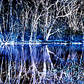 Ghostly Trees In Reflection by ImagesAsArt Photos And Graphics