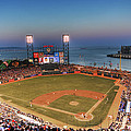Giants Ballpark at Night Print by Shawn Everhart