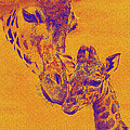Giraffe Love by Jane Schnetlage