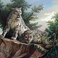 Glamorous Friendship- Snow Leopards by Svitozar Nenyuk
