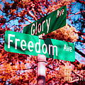 Glory Signs by Sonja Quintero